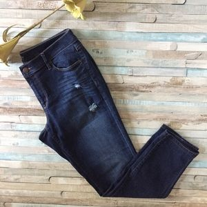 Loft Distressed Modern Skinny Jean, Size 31 or 12